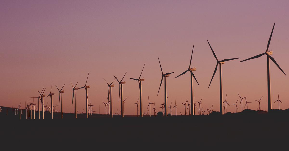 Energia Eólica no Brasil: Entenda o cenário e as expectativas